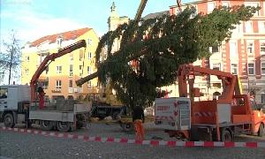 Weihnachtsbaum in Limbach-O.