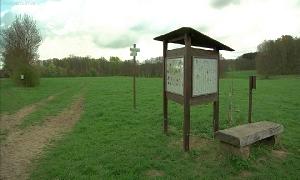 Naturlehrpfad im Landschaftsschutzgebiet Limbacher Teichgebiet