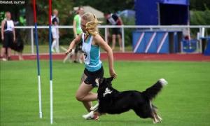 Hundesport im Waldstadion