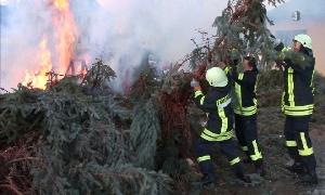 Weihnachtsbaumverbrennen in Pleißa