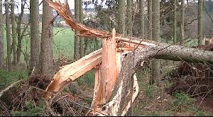 Sturm Eberhard hinterlässt grosse Schäden