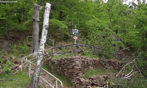 Baumfällarbeiten am Kunnerstein