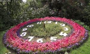 Blumenuhr bald videoüberwacht