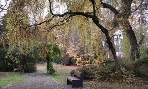 Stadtpark in Limbach-Oberfrohna
