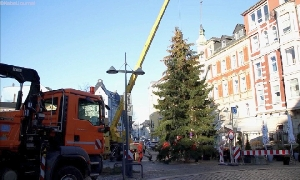 Weihnachtsbaum auf dem Johannisplatz