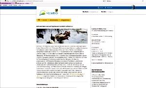 Geflügelpest in Mittelsachsen