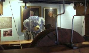 Teddyausstellung ohne Besucher