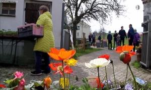 Frühlingsfrischemarkt in Niederfrohna