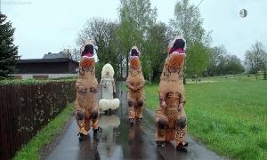Dinos in Röhrsdorf
